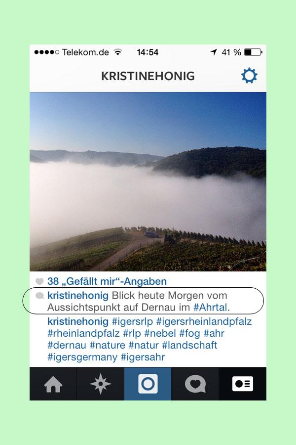 Instagram Bilder Suche
